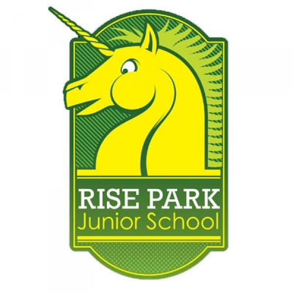 Rise Park Junior School case study special measures